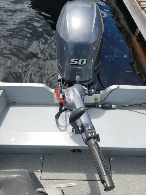 Deluxe Boat Motor-Trappers Point Camp-Savant Lake-Sturgeon Lake-Ontario